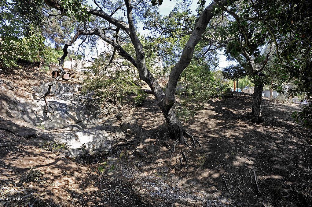 33206 DECKER SCHOOL, Malibu, CA 90265 - Seasonal Creek