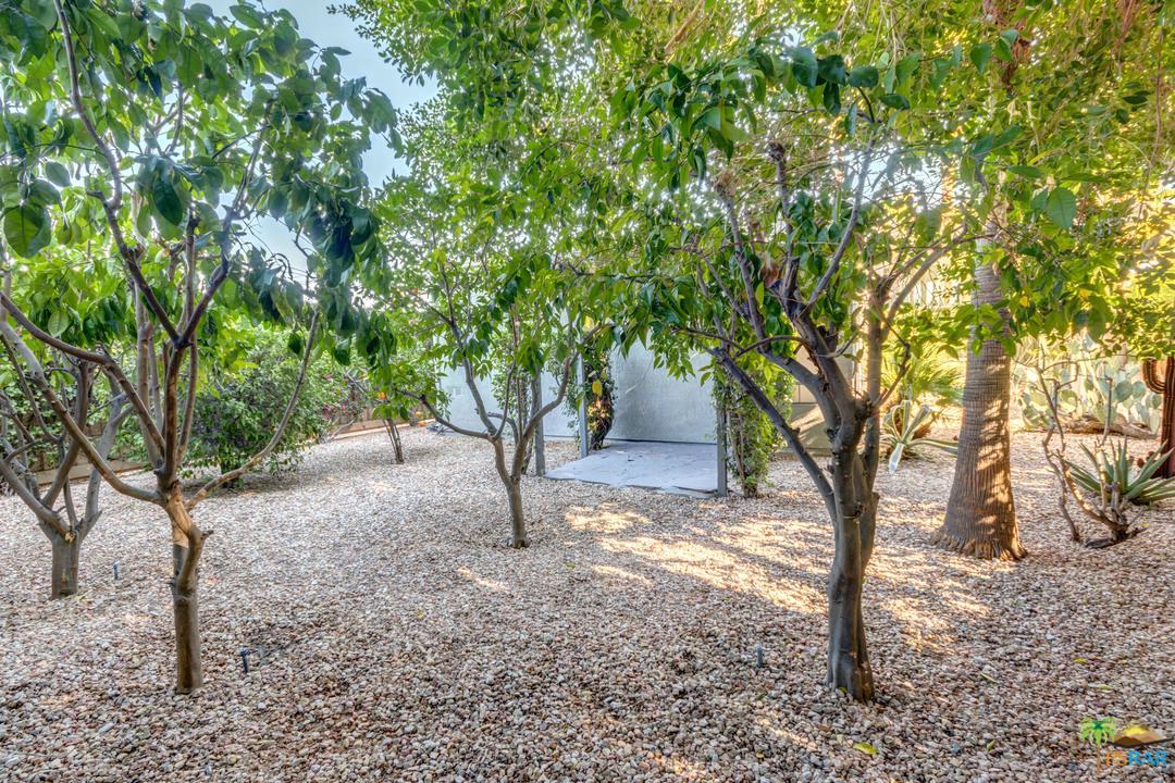 641 DUNES, Palm Springs, CA 92264