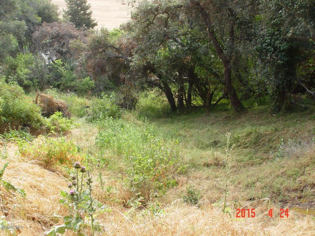 SANTA ANA, Ventura, CA 93001 - Santa Ana Rd-7