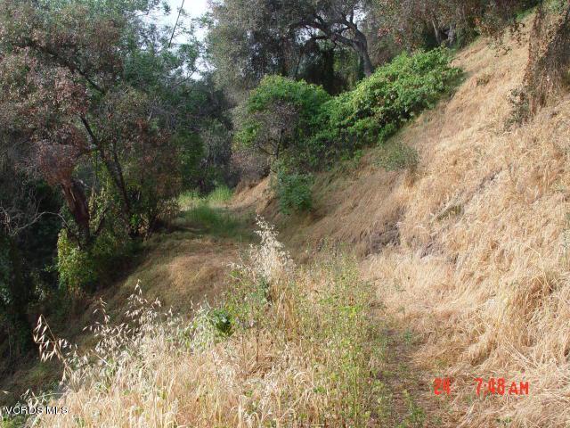 SANTA ANA, Ventura, CA 93001 - Santa Ana Rd-4