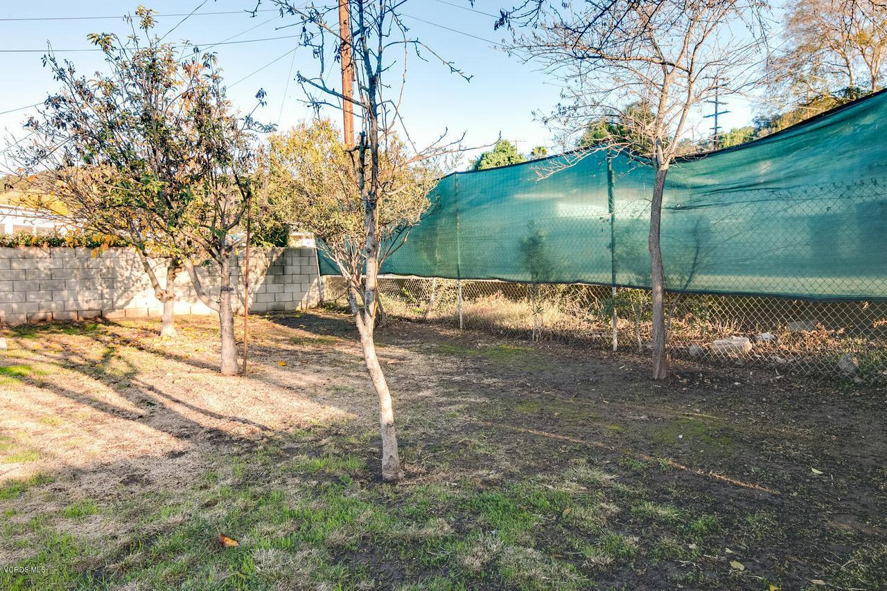 98 CALLE CINCO DE MAYO, Oak View, CA 93022 - 98 Calle Cinco De Mayo-019-14-Fruit Tree