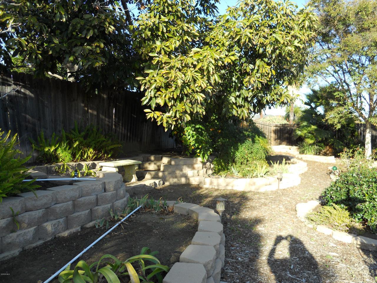 1207 SEYBOLT, Camarillo, CA 93010 - Backyard