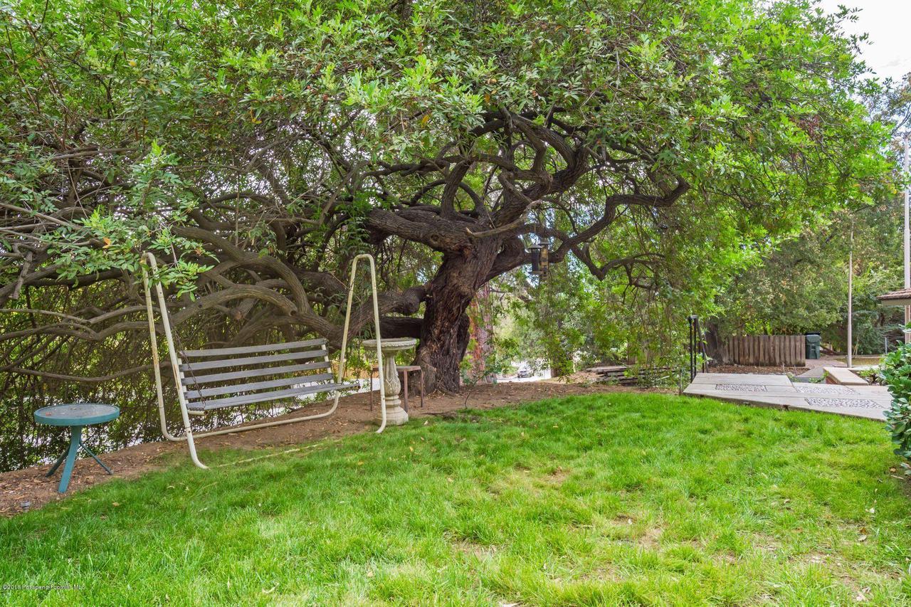 1976 LOMA ALTA, Altadena, CA 91001 - 1976 pepper tree