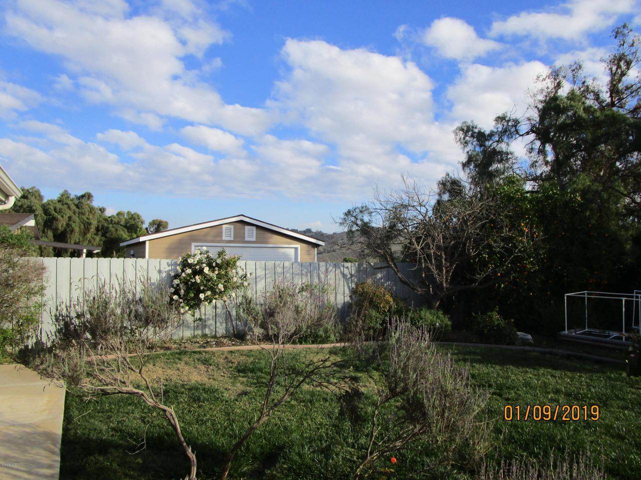 10720 TERNEZ, Moorpark, CA 93021 - Back Yard Fruit Trees