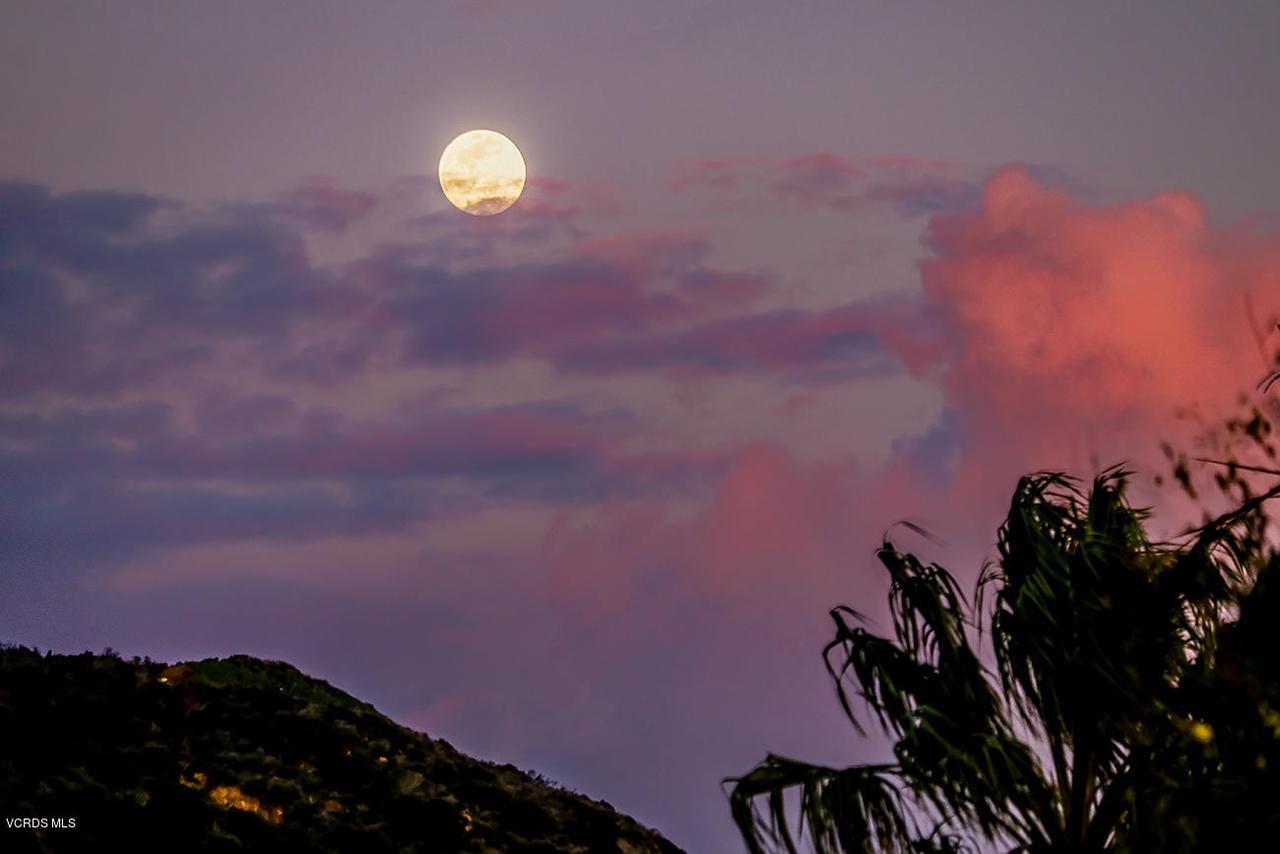 20475 ROCA CHICA, Malibu, CA 90265 - Views-4