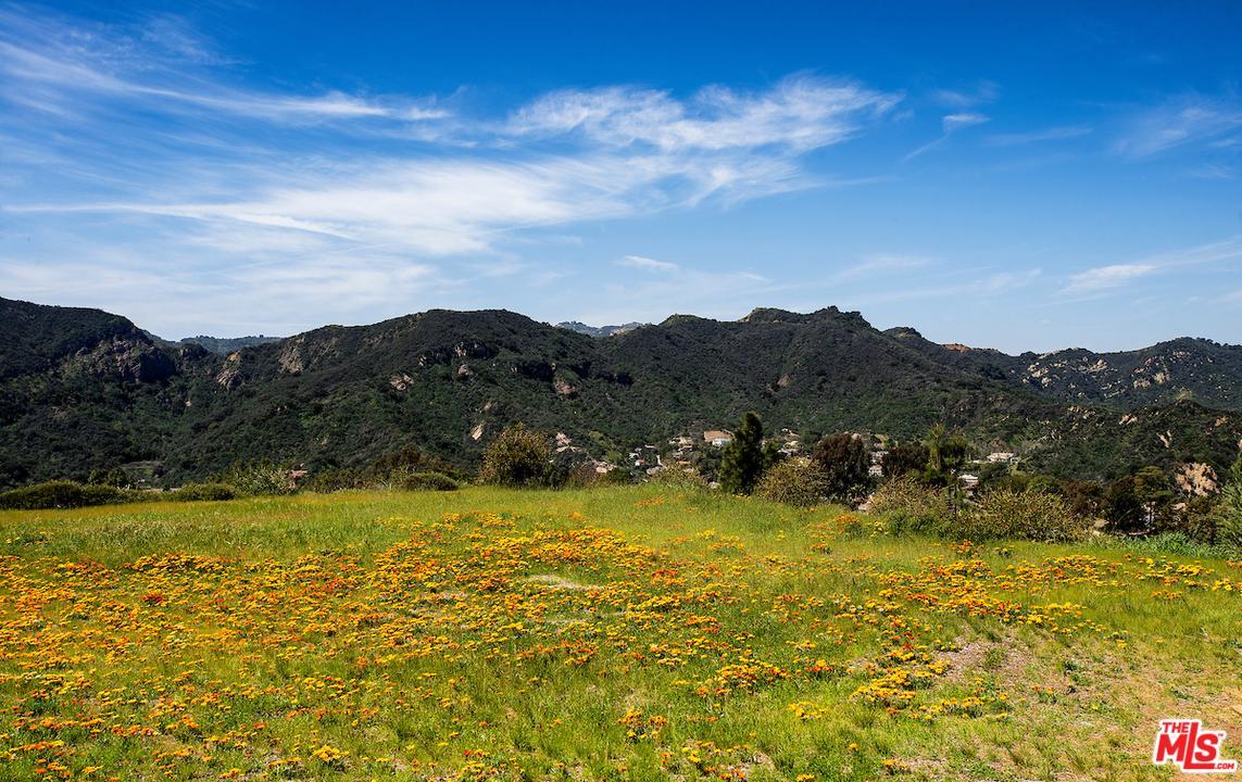 1445 EL BOSQUE, Pacific Palisades, CA 90272