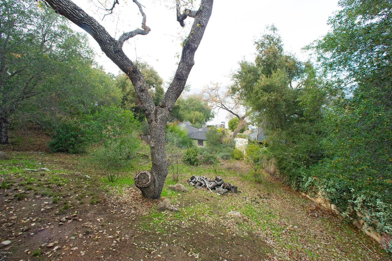 115 GILES, Lake Sherwood, CA 91361 - Back yard with lake views