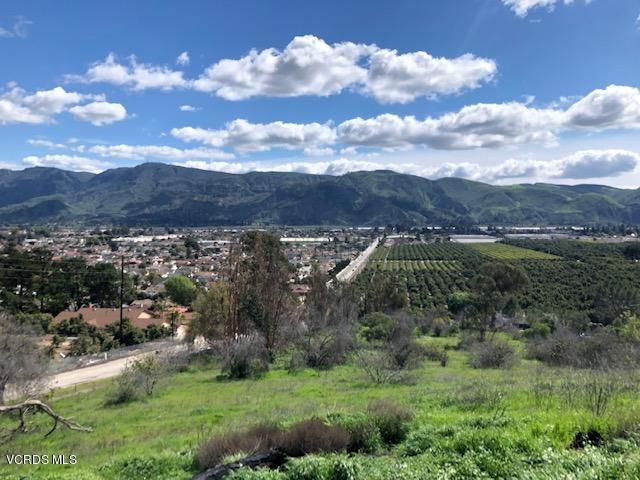 0 PECK AND FOOTHILL, Santa Paula, CA 93060 - IMG_0866