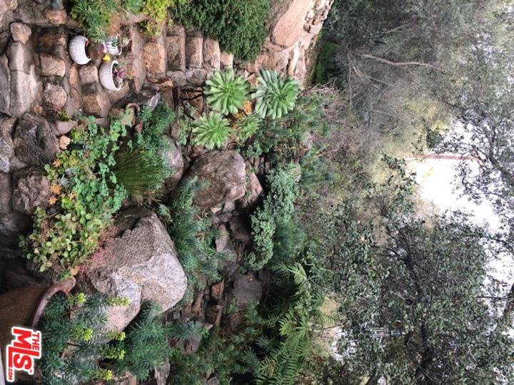 1419 PALM, Altadena, CA 91001