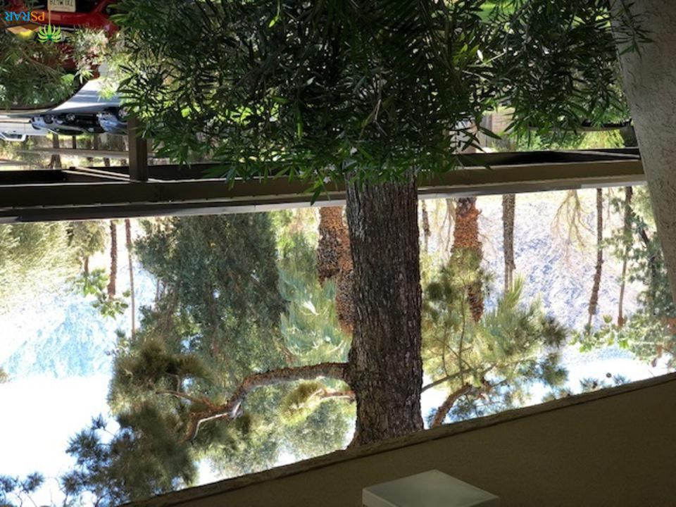 701 LOS FELICES, Palm Springs, CA 92262
