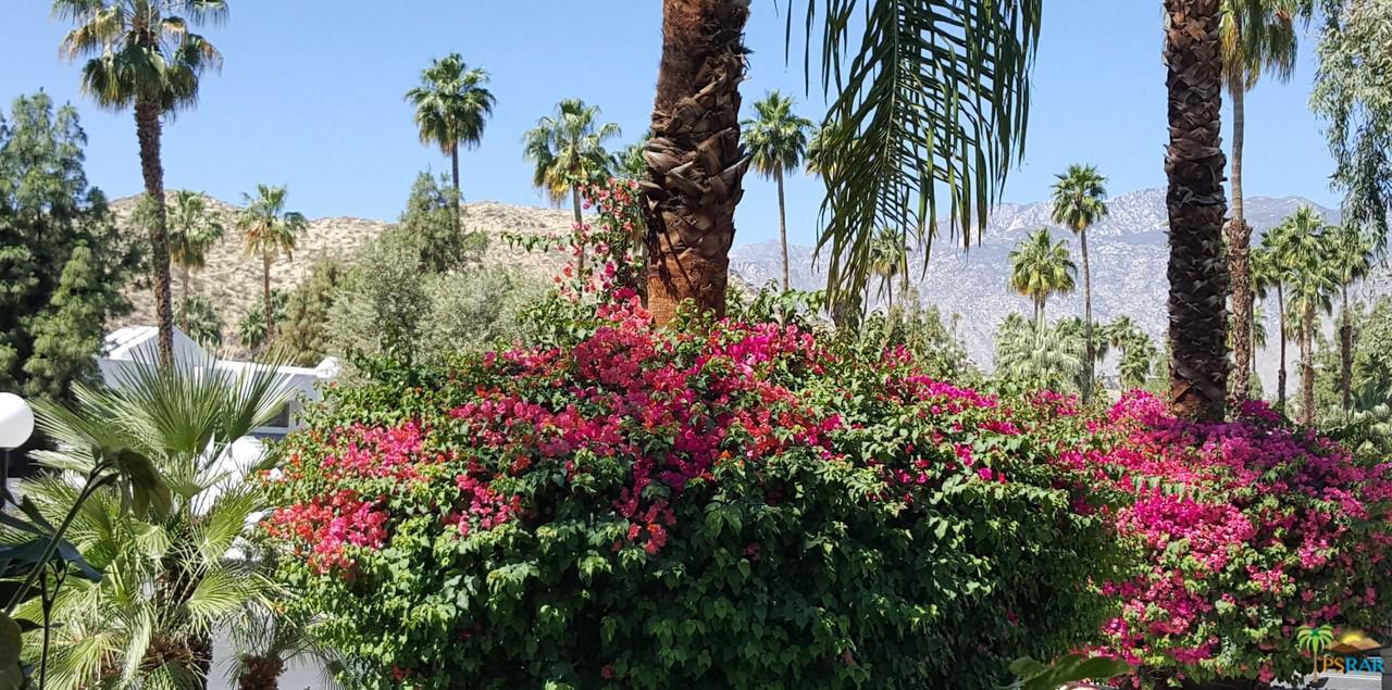 5300 WAVERLY, Palm Springs, CA 92264