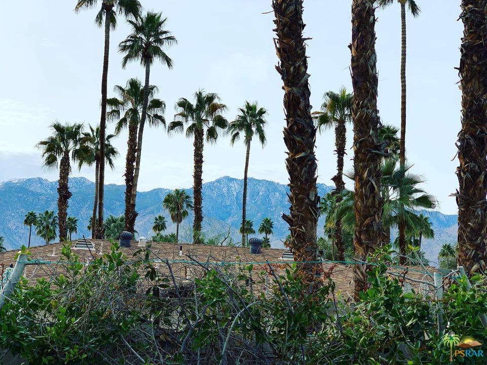 1957 BIRDIE, Palm Springs, CA 92264